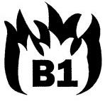 b1 certificaat