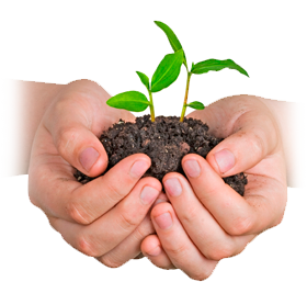 Lees meer over duurzaam drukwerk en milieuvriendelijk drukwerk