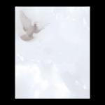 Rouwkaart-Diversen-Model-duif
